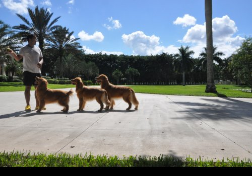 LEONGOLDEN house PALM BEACH